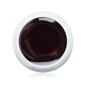 Farbgel Aubergine 5ml Premium als Farbgel für Nageldesigner & Nagelstudios