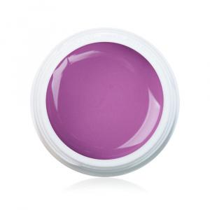 Farbgel Fashionista 5ml Premium als Farbgel für Nageldesigner & Nagelstudios