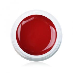 Farbgel Henna 5ml Premium als Farbgel für Nageldesigner & Nagelstudios