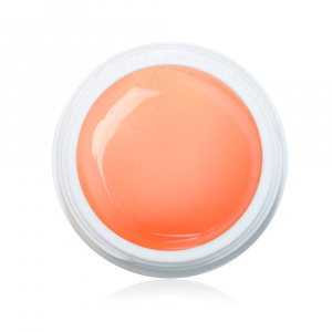 Farbgel Bright Apricot 5ml Premium als Farbgel für Nageldesigner & Nagelstudios