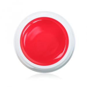 Farbgel Fruity 5ml Premium als Farbgel für Nageldesigner & Nagelstudios