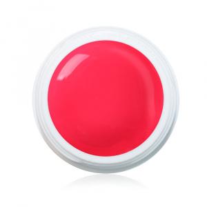 Farbgel Tropical 5ml Premium als Farbgel für Nageldesigner & Nagelstudios