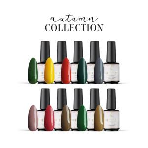 Autumn Collection als Spar Sets im Nageldesign für Nageldesigner & Nagelstudios